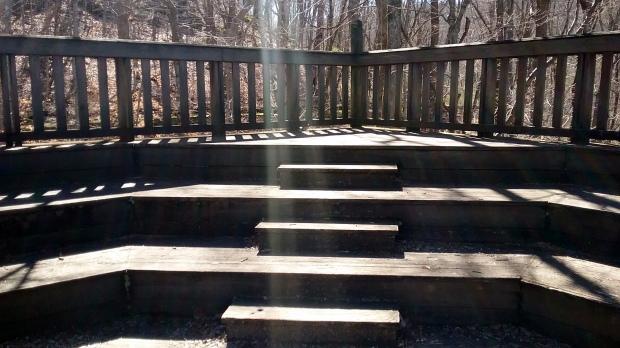 Blog Post 1 Walking Meditation